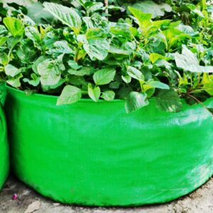 """HDPE Grow Bag (18″ X 9"""")"""