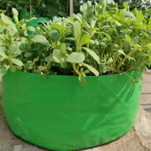 """HDPE Grow Bag (18″ X 6"""") For Leafy Green Vegetables Best for Terrace and Kitchen Gardening (Pack of 3)"""