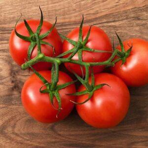 Tomato Seed Hybrid