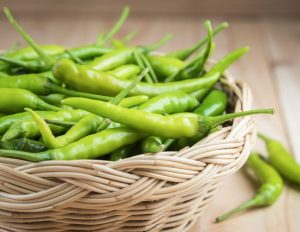 Green Chilli Seeds