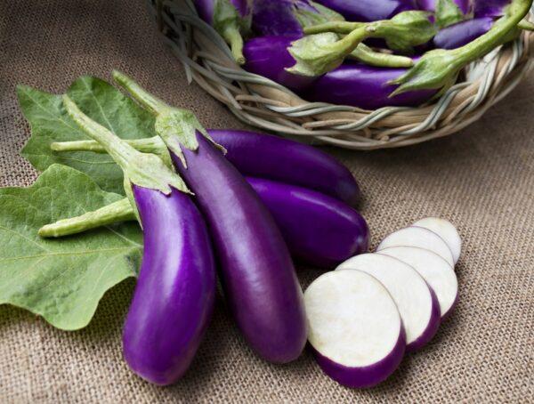 Brinjal Purple Long Seeds