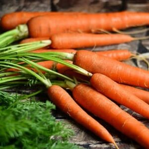 Carrot Early Nantes Seeds