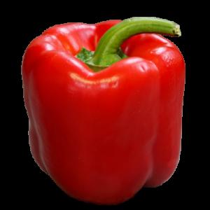 Red Capsicum Seed