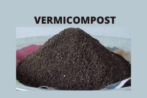 वर्मीकम्पोस्ट का आर्गेनिक गार्डनिंग में उपयोग, इसके फायदे और बनाने की विधि - Vermicompost for plants in Hindi
