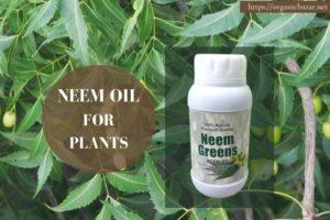 नीम तेल के फायदे और गुण जो बनाते हैं पौधों को बेहतर - Neem oil for plants in Hindi