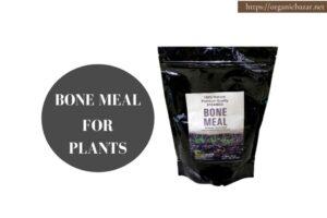 पौधों के लिए फायदेमंद होता है मिट्टी में बोन मील का प्रयोग - Bone Meal For Plants Soil in Hindi